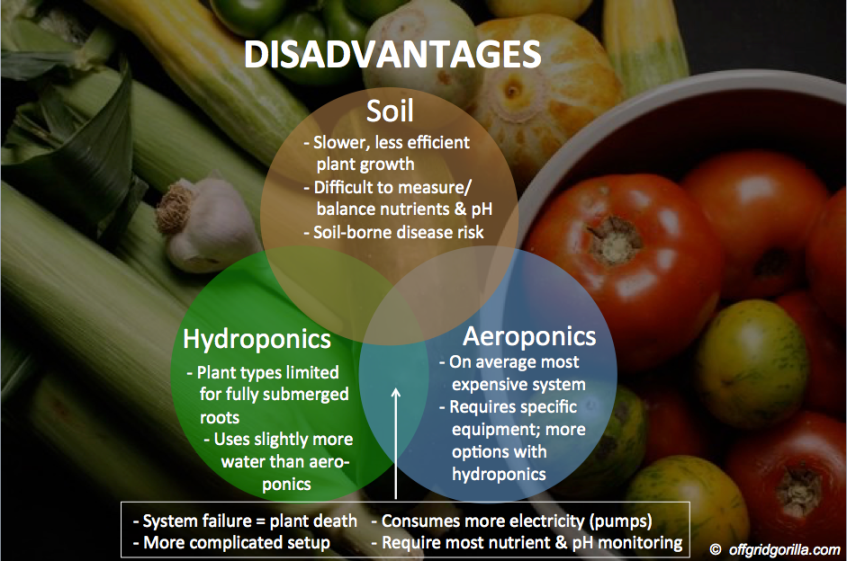 Hydroponic-Disadvantages